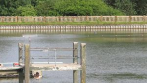 Hampstead Men's Bathing Ponds